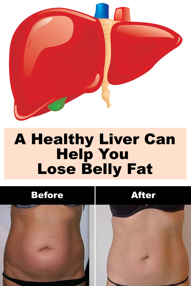 A Healthy Liver Can Help You Lose Belly Fat