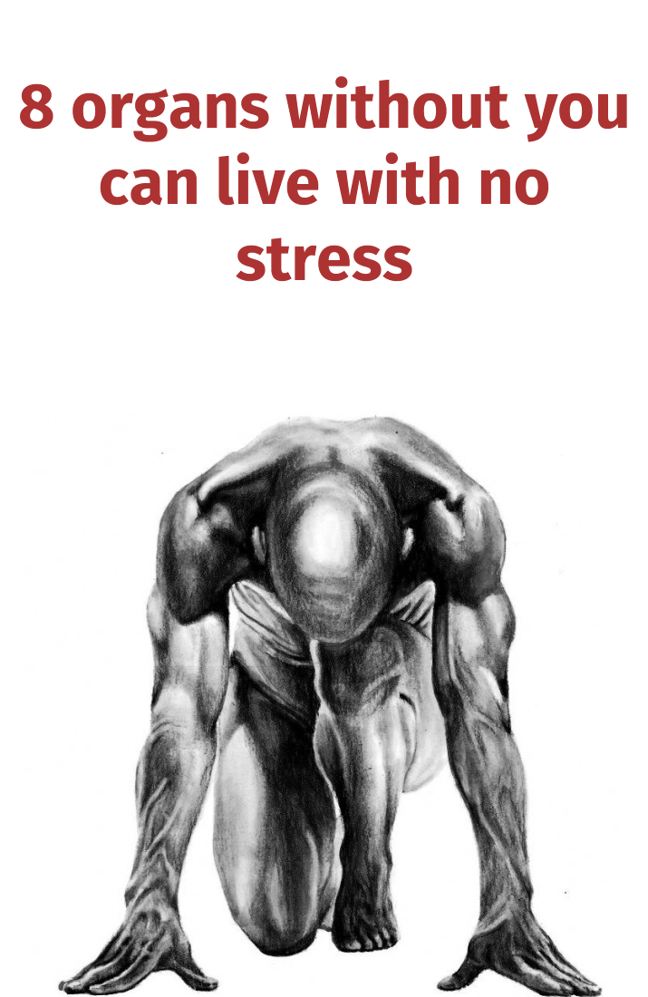 8-organs-without-you-can-live-with-no-stress