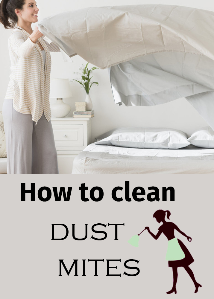How to Clean Dust Mites