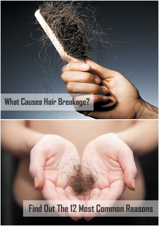 What Causes Hair Breakage?