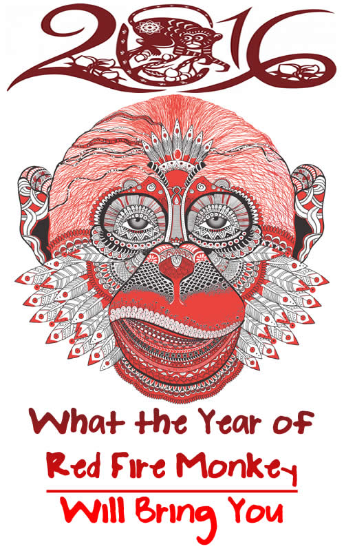 What the Year of Red Fire Monkey Will Bring You