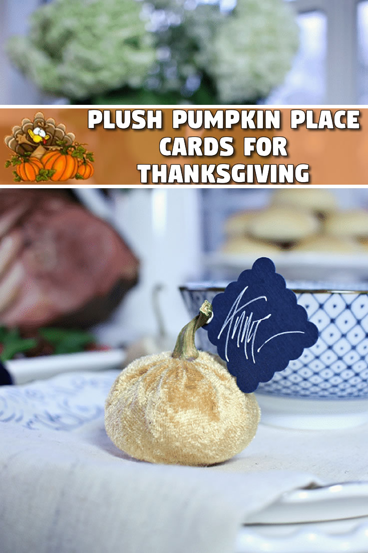 Plush Pumpkin Place Cards for Thanksgiving