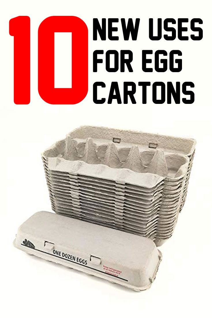 10 New Uses for Egg Cartons