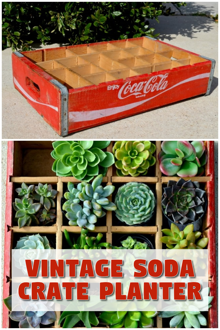 Vintage Soda Crate Planter