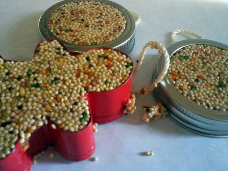 Birdseed Feeder Craft