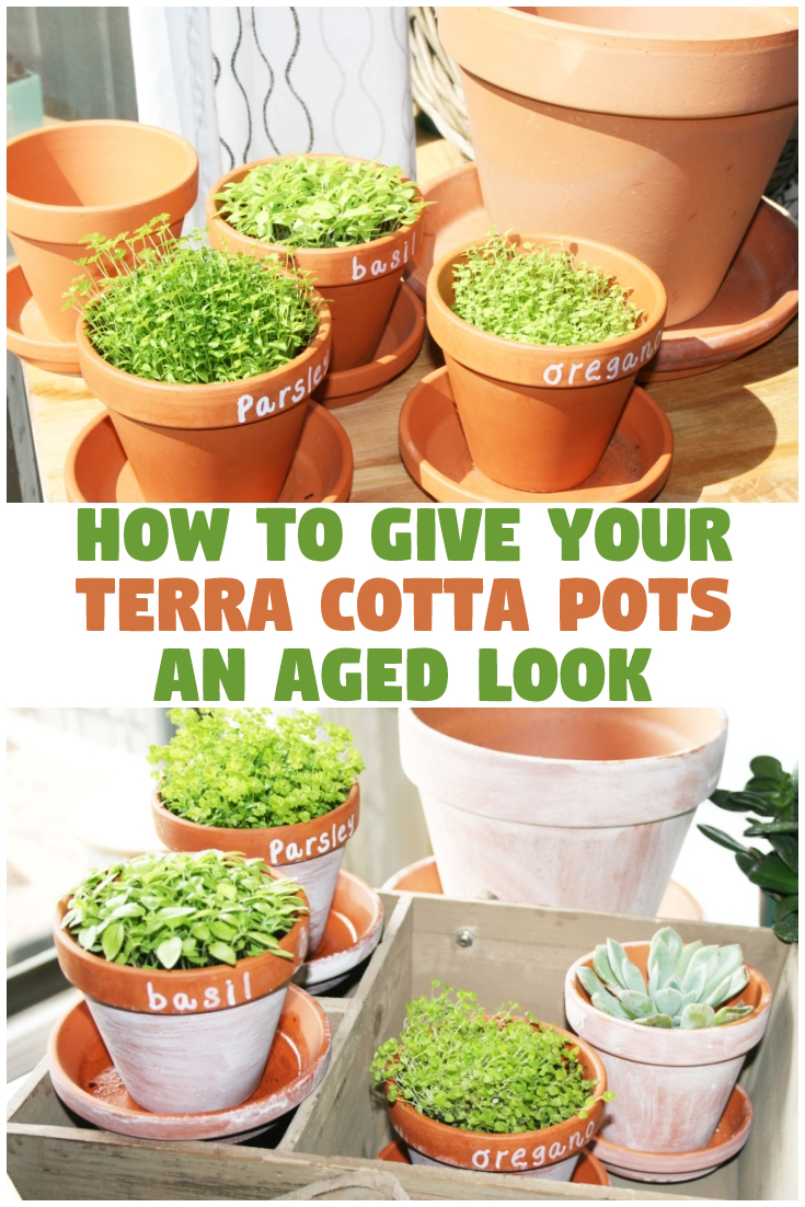 How to give your terracotta pots an aged look