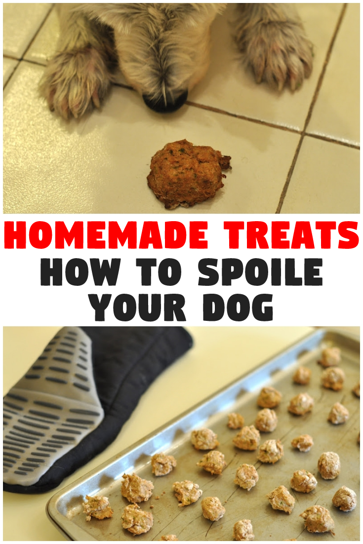 How To Spoile Your Dog – Homemade Treats